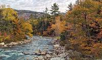 Swift River Autumn