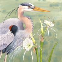 Great Blue Heron and Spider Lilies Art Prints & Posters by Kate Halpin