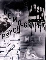 PSYCHOGRAPHIC - DEMOGRAPHIC MELT