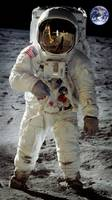 Apollo 11 A7L space suit worn by Buzz Aldrin on lu