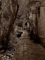 old jaffa alley sepia