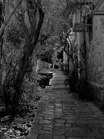 old Jaffa alley (b&w)