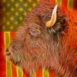 """American Bison Flag"" by lightningman"