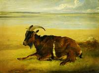 Victorian  and Edwardian Art - Goat