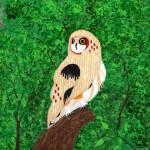 """Crazy Owl"" by LimeCreekArt"