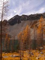 Fall larches Upper Eagle Lake, WA