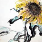 """""""Sunflower #2"""" by ShaSha"""