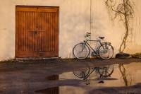 A bicycle after the rain