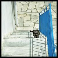 Cat on the Steps-framed