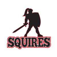 Knight Silhouette Squires Sword Shield Cartoon