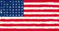 Flag of the Brave - Us Flag