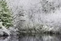 Lower_case_pond_winter