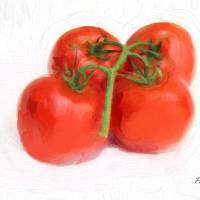 Tomato Impasto Art Prints & Posters by Pat Cook