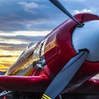 Sea Fury 232 Reno Air Races Art Prints & Posters by Mark E Loper