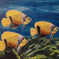 Majestic Angelfish Art Prints & Posters by Wayne Cantrell