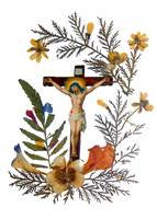 Crucifix Dried Flowers