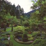 """""""Butchart Gardens in Rain 2, 2004"""" by PriscillaTurner"""