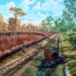 The Beginning of the End - Florida Osceola Turkeys
