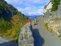 Follow The Nature - Mount Baker