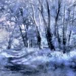 """A Walk in Winter"" by JohnRivera"