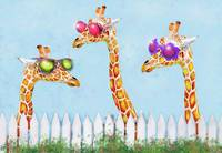 sunglasses giraffes