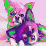 """chihuahua love"" by pietrastone"