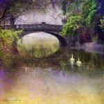 """nice bridge in romania"" by rchristophervest"
