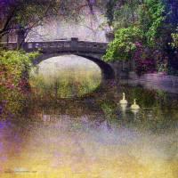 nice bridge in romania Art Prints & Posters by r christopher vest