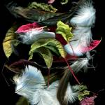 """Leaves & Feathers I"" by LindaCavaney"