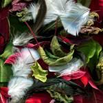 """""""Leaves & Feathers II"""" by LindaCavaney"""
