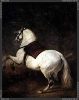 A_White_Horse by Diego Velázquez