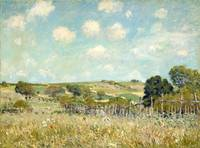 Alfred Sisley Meadow 1875 Painting