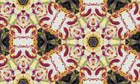 Marsala Decorative Abstract Majolica 2