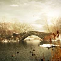Gapstow Winter Art Prints & Posters by Jessica Jenney