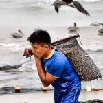 """Carrying Sardines from Shore_DSC0150_edit"" by AndreHugosPlace"