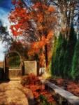 Glorious Autumn by RCdeWinter