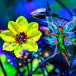 """1 Fairy Dust 6"" by NaturePlusStudios"
