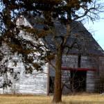 """The Barn Door Left Open"" by TaylorMadeArt.US"