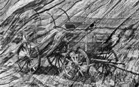Wagon on wood in black and white