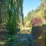 """""""Butchart Gardens 19, 1993"""" by PriscillaTurner"""