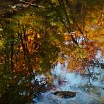 """New Hampshire Stream"" by bavosiphotoart"
