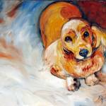 """LADY the Sweet Cocker Spaniel"" by MBaldwinFineArt2006"