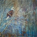 """""""Bald Eagle In Winter"""" by foxbrush"""