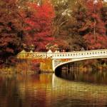 """Autumnal Bow Bridge"" by JessicaJenney"