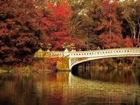 Autumnal Bow Bridge