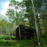 """""""Cabin Oak Creek NRA,WA"""" by dgolden"""