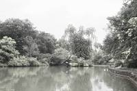 Botanic Garden Singapore, Infra-red digital