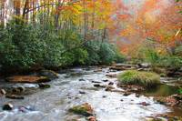 Cataloochee, 10-27-14 036_filtered-a