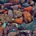 """Rocks Underwater"" by LJdesigns"