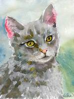 Gray Cat Art | Tommy Cat